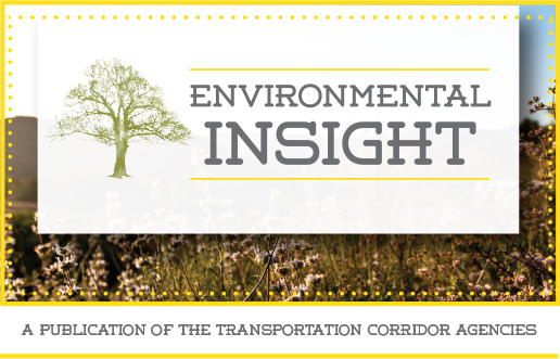 Environmental Insight